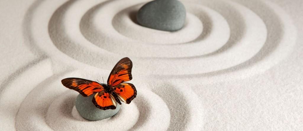 Mindfulness Hold – Styrk din indre ro.